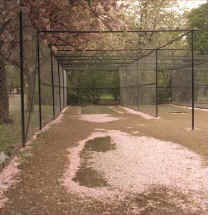 Vic Park nets in Spring